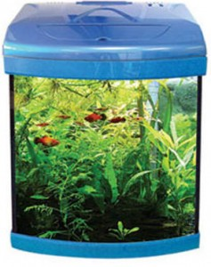 aqua_one_aquarium