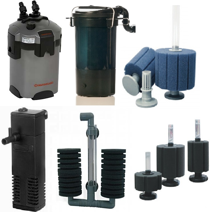 Guide to aquarium filters the fish doctor Types of aquarium filters