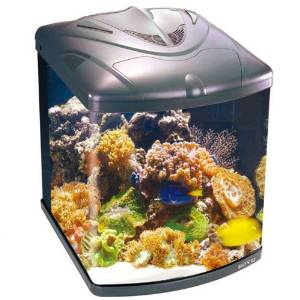 The nano marine aquarium