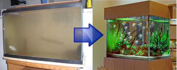 Sprucing up an old aquarium