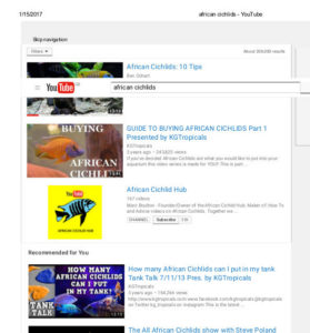 African cichlids on youtube