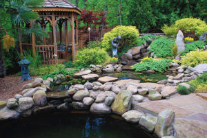 koi pond stream