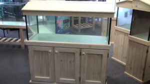 beginners fish tank cabinet and hood